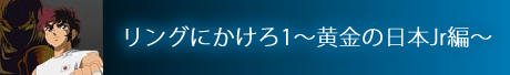 MYスロ リングにかけろ1 ~黄金の日本Jr.編~
